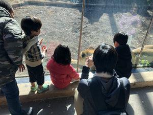 フィラデルフィア動物園-5