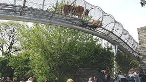 フィラデルフィア動物園-1
