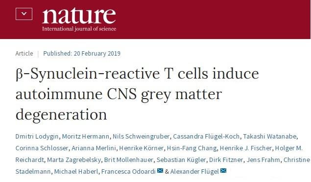 β-シヌクレイン反応性T細胞による、新しい多発性硬化症モデル
