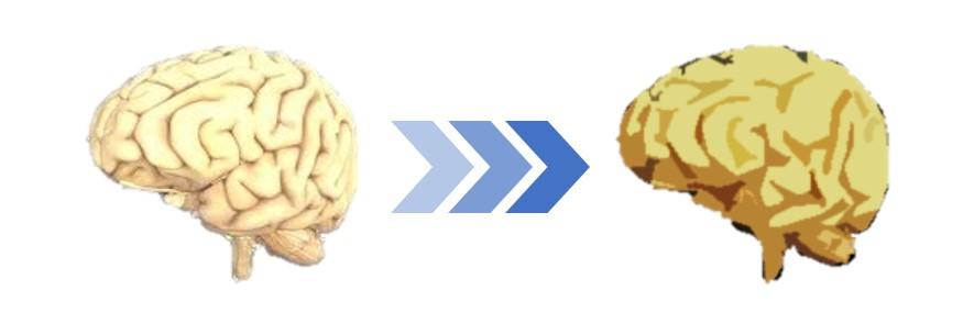 年を取ると脳が固くなり……