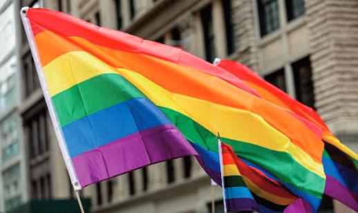 同性愛に遺伝子が関与するか