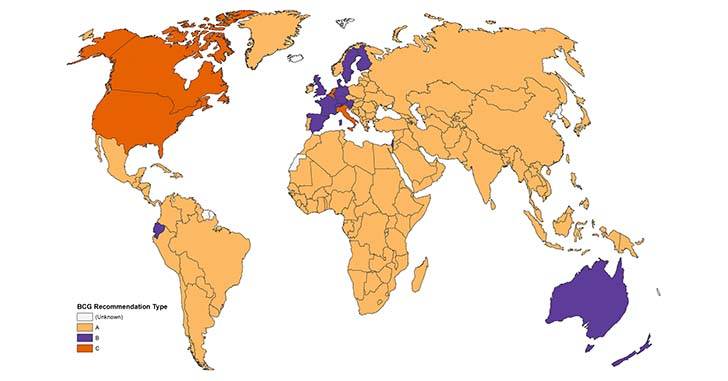 BCGマップ