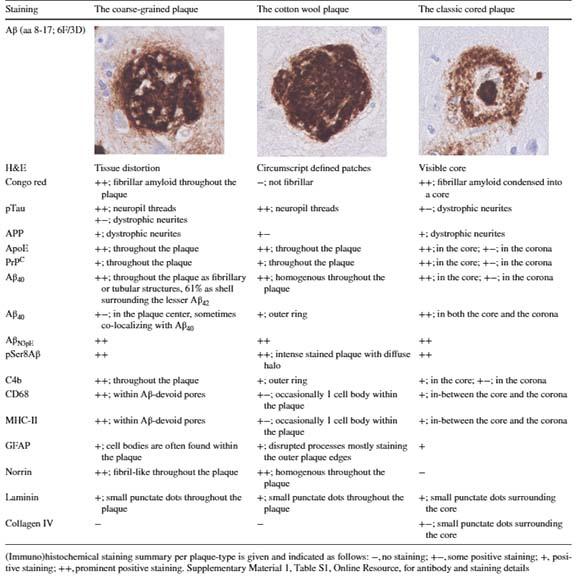 coarse-grained-plaques-3