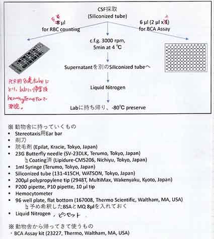 採取した髄液の検査方法