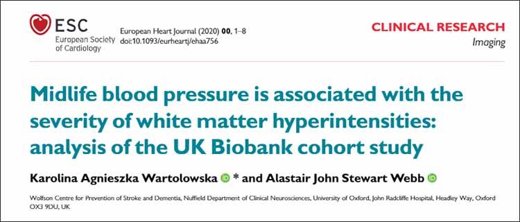 拡張期血圧と脳白質障害