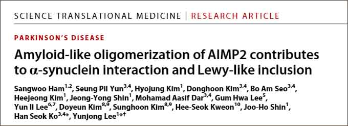 AIMP2 contributes to a-syn interaction and LB
