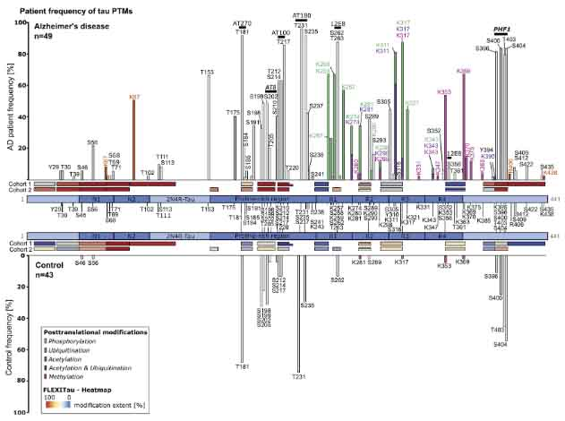 Tau PTM Profiles Identity Patient Heterogeneity and Stages of AD