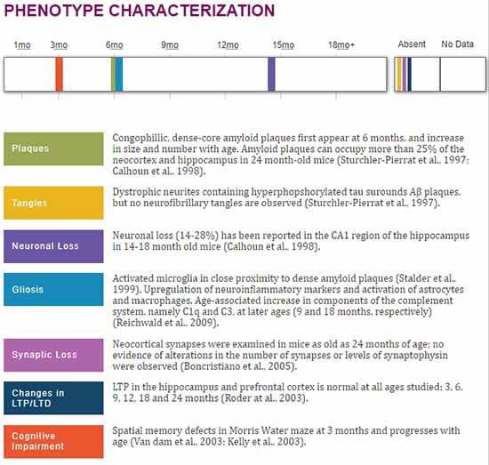 APP23のフェノタイプ