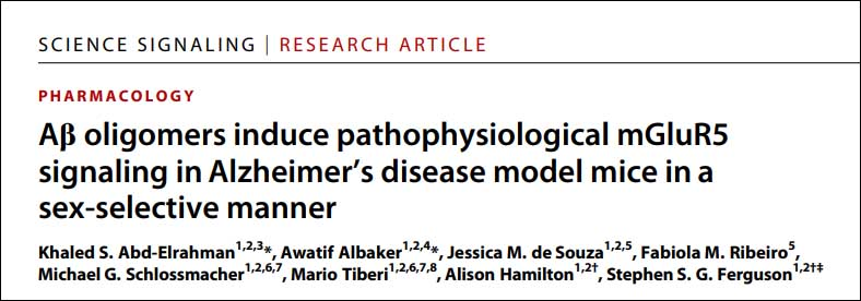 Aβ oligomers induce pathophysiological mGluR5 signaling in Alzheimer's disease model mice in a sex-selective manner