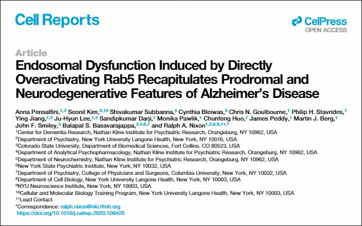 Endosomal-Dysfunction-Induced-by-Directly-Overactivating-Rab5-Recapitulates-Prodromal-and-Neurodegenerative-Features-of-Alzheimer's-Disease