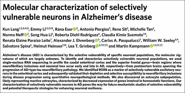 210205-Molecular-characterization-of-selectively-vulnerable-neurons-in-alzheimer's-disease