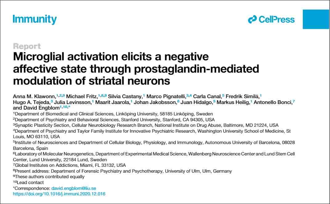 Microglial activation