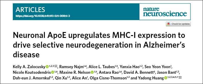 nat-neurosci-neuronal-apoe-mhcI-title