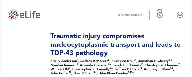 traumatic injury title