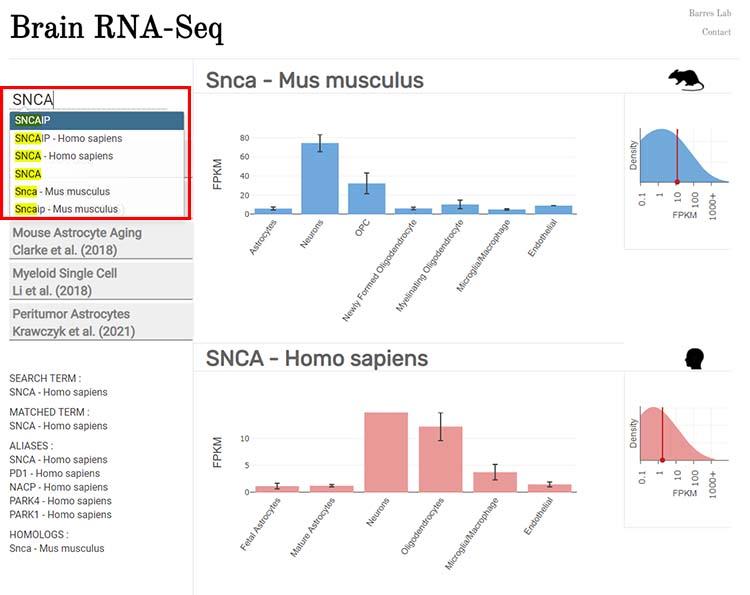 Brain RNA-Seq-1