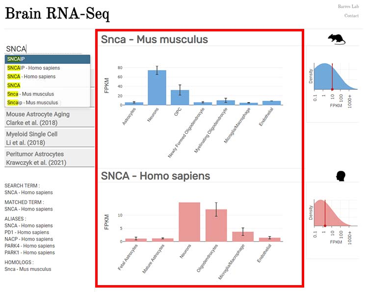 Brain RNA-Seq-2