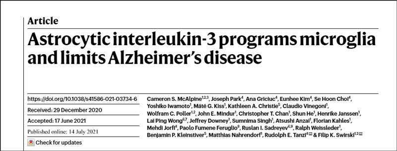 アストロサイト由来のIL-3は、ミクログリアがアルツハイマー病病理と戦う為に重要