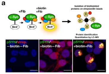 BioID2法