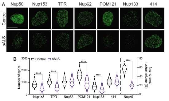 sci_trans_med-2021-CHMP7-1