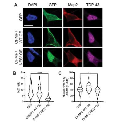 sci_trans_med-2021-CHMP7-12