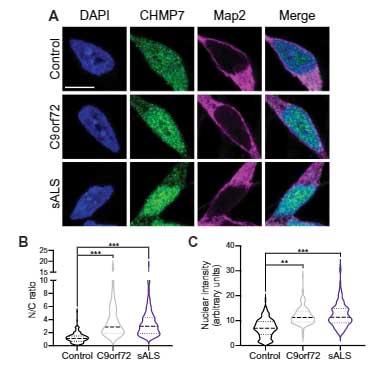 sci_trans_med-2021-CHMP7-3