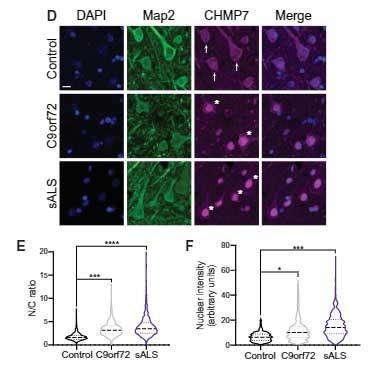 sci_trans_med-2021-CHMP7-4