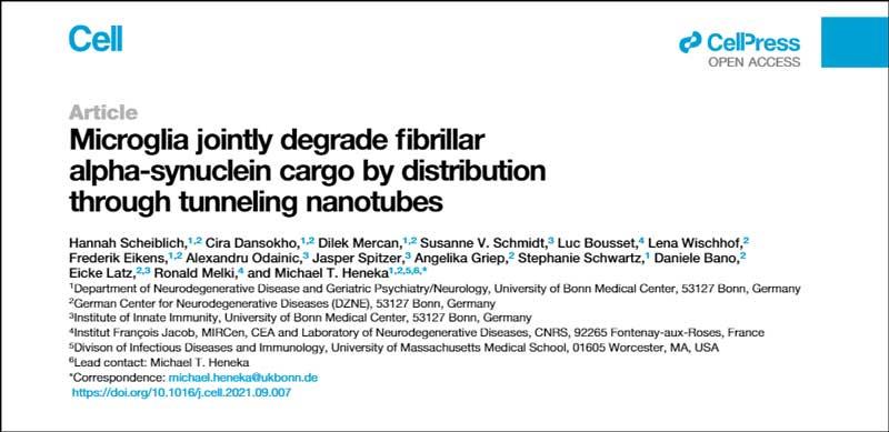microglia-asyn-nanotube-title